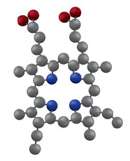 Protoporphyrin IX molecule
