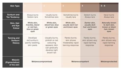 Figure 1. Fitzpatrick classification system