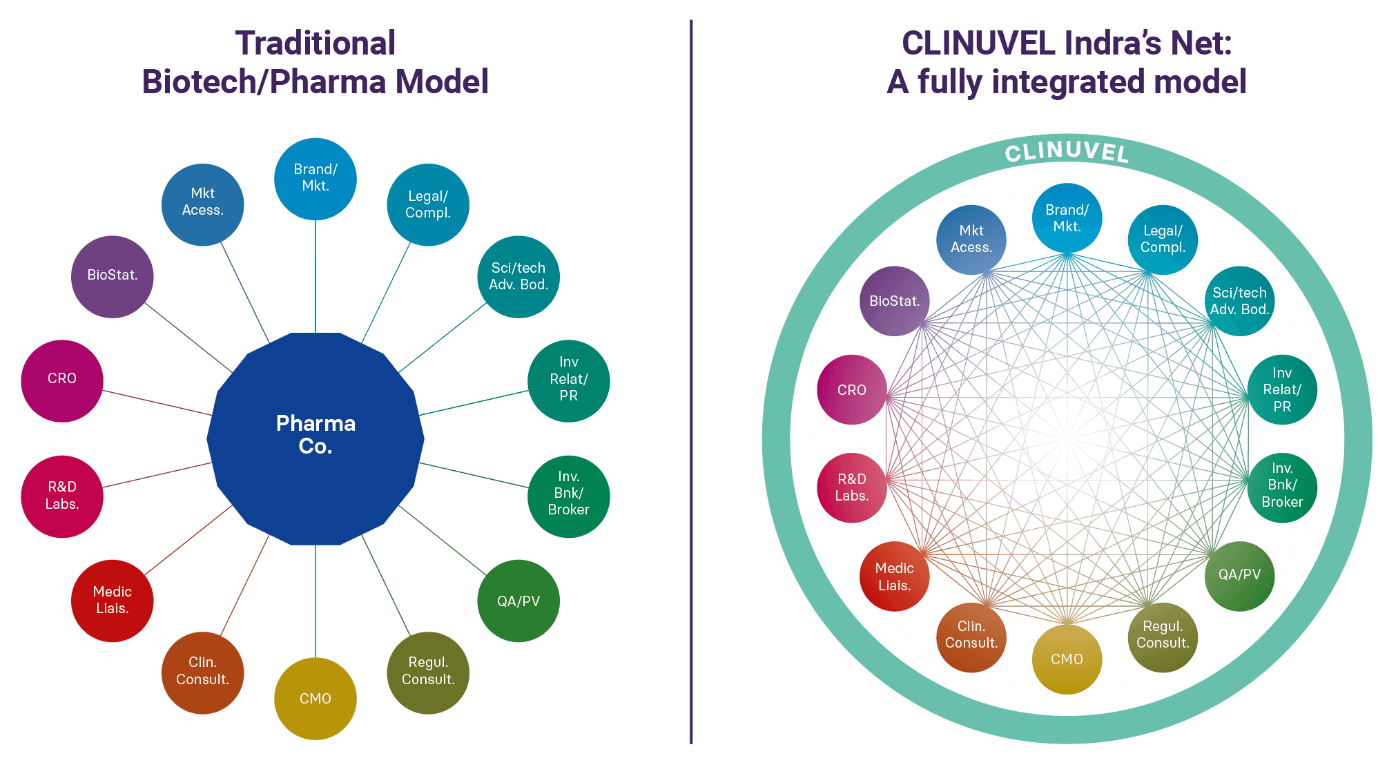 CLINUVELS Indra's Net: A fully integrated model